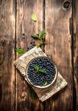 Lösa blåbär i en kopp på ställningen Royaltyfria Foton