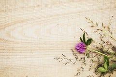 Lösa blommor på lantlig timmerbakgrund Royaltyfri Bild