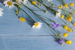 Lösa blommor på träbakgrund Royaltyfria Bilder