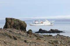 Lösa chinstrappingvin och kryssningskepp i bakgrunden, Antarktis Royaltyfria Bilder