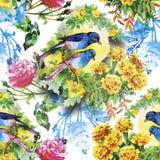 Lösa exotiska fåglar för vattenfärg på sömlös modell för blommor på vit bakgrund stock illustrationer