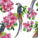 Lösa fasandjurfåglar i blom- sömlös modell för vattenfärg royaltyfri illustrationer