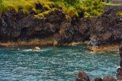 Lösa havvågor Royaltyfri Fotografi