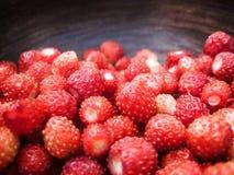 Lösa jordgubbar i en lergodshandfat arkivbild