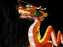 Lösa ljus, kinesisk drake på Dublin Zoo på natten arkivbild