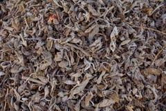 Lösa torkade teblad för svart te, makro arkivfoto