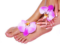 Löschen des Lacks Französische Maniküre auf weiblichen Füßen und Händen Stockfoto
