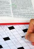 Lösen Sie das Puzzlespiel mit der Hilfe vom Verzeichnis Lizenzfreie Stockfotos