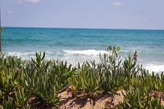 L?st Cretan hav f?r Figdety sommar arkivfoton