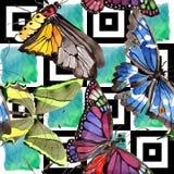 Löst kryp för sällsynta fjärilar i en vattenfärgstil Seamless bakgrund mönstrar Textur för tygtapettryck arkivfoton