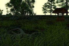 Löst land med gräs och träd i sommartiden Royaltyfri Foto