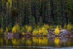 Löst landskap av Northwest Territories 2 Fotografering för Bildbyråer