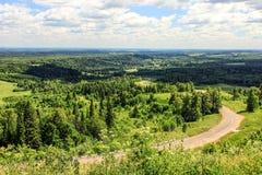Löst landskap för rysk sommar Arkivbild