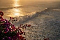 Löst landskap, vågor och röda blommor på solnedgång arkivfoton