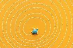 Lösung und lösen Konzepte mit der Babyschildkröte, die Labyrinthlinie weitergeht Intelligente Richtung für Geschäft stock abbildung
