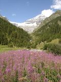 Lötschental, die Schweiz Stockfotografie