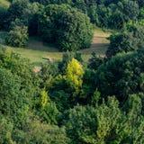 Lövskog i den lantliga Hilly Terrain royaltyfri foto