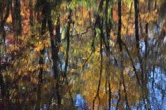 Lövverk höst, färger, vatten, reflexion, krusning, abstraktion, impressionism, sol, effekt, blått, himmel, sidor, träd, filialer, Royaltyfria Foton