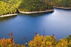 Lövverk sjö, träd Royaltyfria Bilder