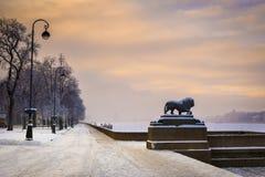 Löwe am Admiralitäts-Damm, St Petersburg, Russland Stockfotos