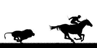 Löwe, der laufendes Pferd jagt Stockfotografie