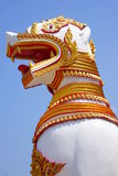 Löwe, ein Birmane Lizenzfreies Stockbild