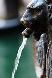 Löwe ging Brunnen in Venedig voran Lizenzfreies Stockbild