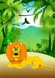 Löwe im Dschungel stock abbildung