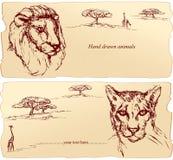 Löwe- und Gepardköpfe Lizenzfreie Stockfotos