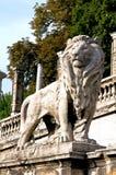 Löweabbildung an der Wurzel des Buda Schlosses in Budapest Lizenzfreie Stockfotos