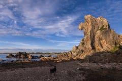 Löwehauptberg auf dem Strand Lizenzfreie Stockbilder