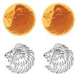 Löwehauptikone Stockfotos