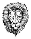 Löwehaupttintenillustration Stockfoto