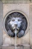 Löwehauptwasserbrunnen Lizenzfreie Stockbilder