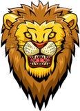 Löwemaskottchengesicht Stockfoto