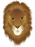 Löwen Kopf Stockbild