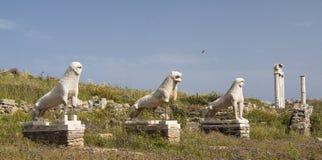 Löwen von Delos Stockbild
