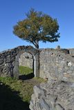 Löwenburg的废墟 库存照片