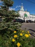 Löwenzahn auf dem Hintergrund der alten Kirche Lizenzfreies Stockbild