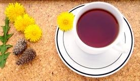 Löwenzahnblume Teatime Lizenzfreies Stockbild