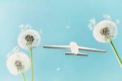 Löwenzahnblumen und -flugzeug modellieren im blauen Himmel Reise, Sommerferien, Luftfahrt und Flugkonzept stockbilder
