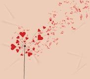 Löwenzahnherzen und romantischer Hintergrund der Musikvalentinsgrüße Lizenzfreie Stockfotos