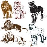 Löwin lizenzfreie abbildung