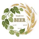 Lúpulos e ilustração do trigo para a etiqueta da cerveja Foto de Stock
