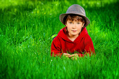 Lüge auf einem Gras Lizenzfreie Stockfotos