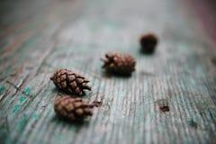 Lüge einiger Kiefernkegel auf einem Holztisch Stockfotos