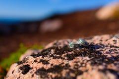 Lüge mit zwei silberne Ringen auf einem Felsen Stockfotos