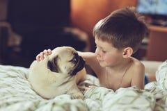 Junge und Pug Stockbilder