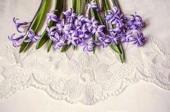 Lügenspitze der violetten Hyazinthen auf Spitzehintergrund Stockbild