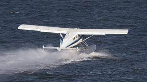 lądowanie pływakowy samolot. fotografia royalty free